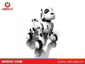 Tổng quan về Robot thú cưng